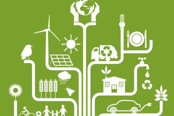 Blockchain renewable energy pilot