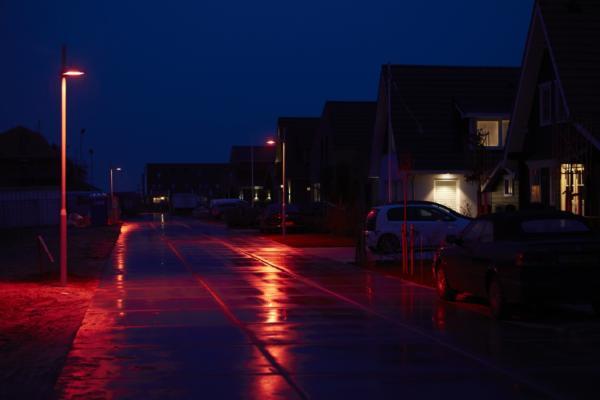 Dutch town installs bat-friendly lighting