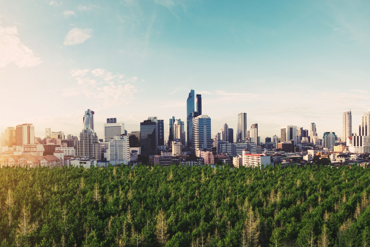 Forests can form part of the mix of resilient green infrastructure
