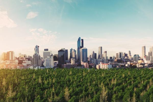 UN calls for investments in green infrastructure