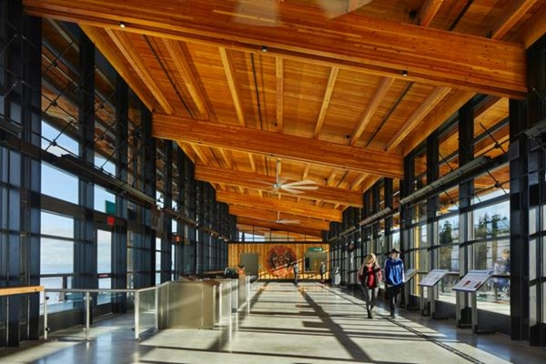 Daylight-filled interior of the terminal with views of the water. Copyright: Benjamin Benschneider