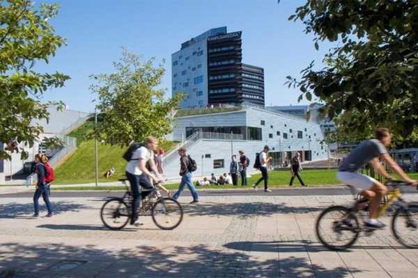 The universities' carbon footprint was calculated by the multidisciplinary Carbon Group