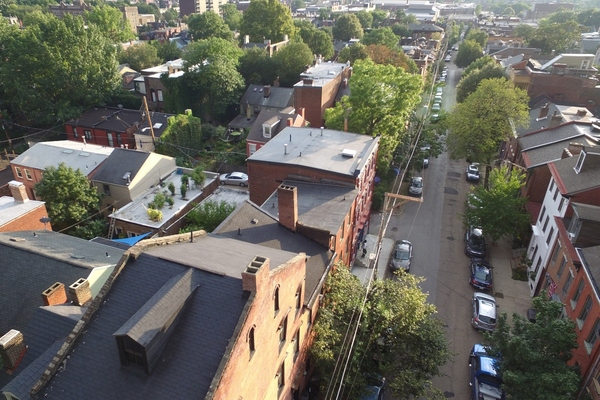 Pittsburgh announces investment in equitable street tree strategy