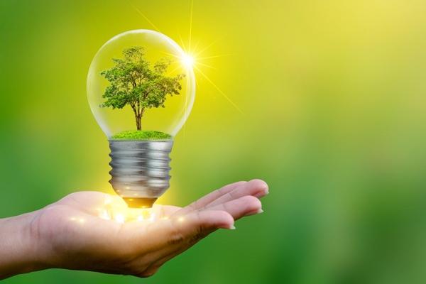 Hamburg schools chosen for renewable energy pilot through AcceliGOV challenge