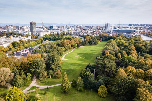 Cardiff progresses plans for urban forest across the city