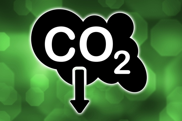 UK local authorities work together to reduce carbon footprints