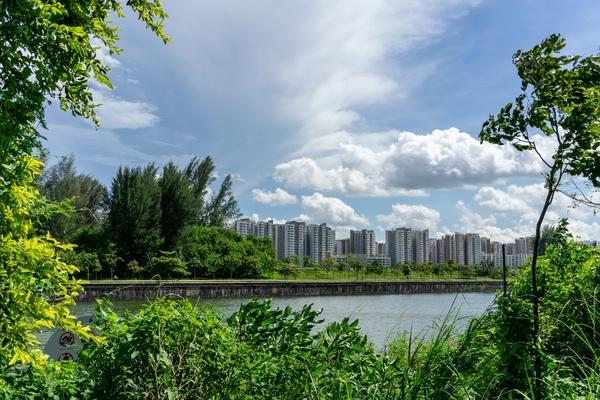 Singapore announces plans for blockchain and FinTech development in Punggol District