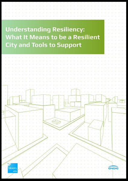 White paper: Understanding Resiliency : What it means to be a resilient city and tools to support